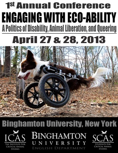 dis-abled dog running with the help of wheels